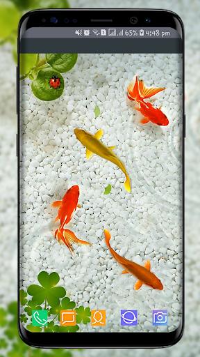 3d Fish Wallpaper Posted By Samantha Tremblay