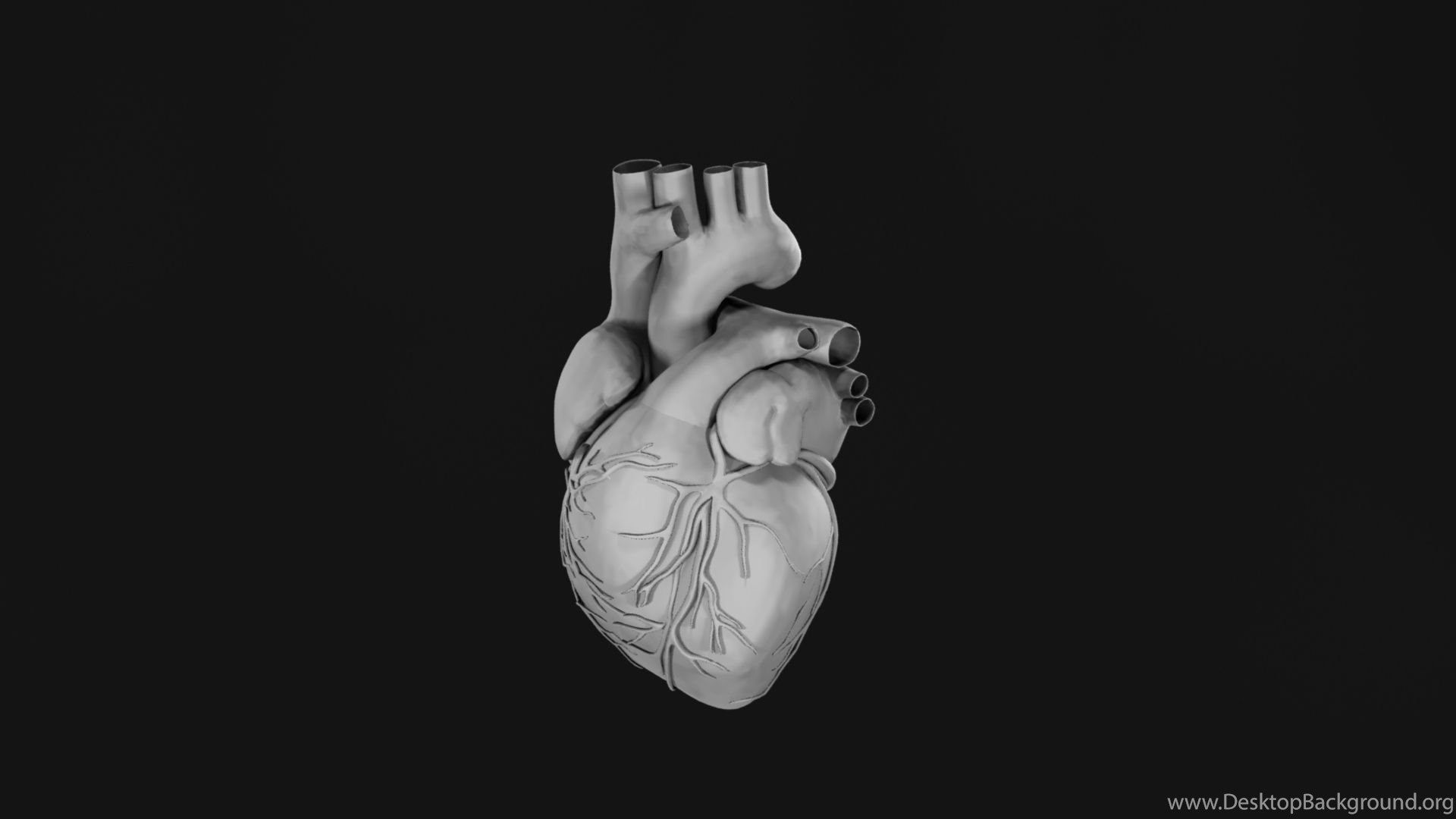 3d Heart Wallpaper Posted By Christopher Walker