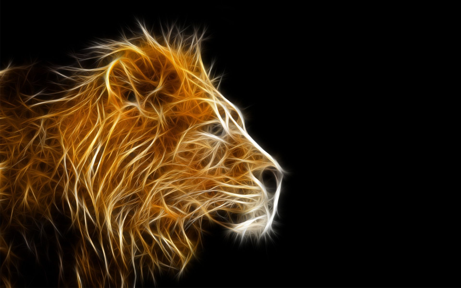 3d Lion Wallpapers Posted By Samantha Thompson Images, Photos, Reviews