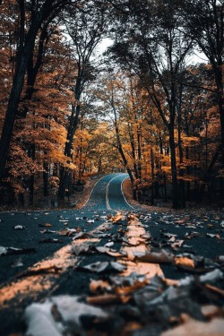 Aesthetic Autumn Wallpapers Posted By Ryan Anderson