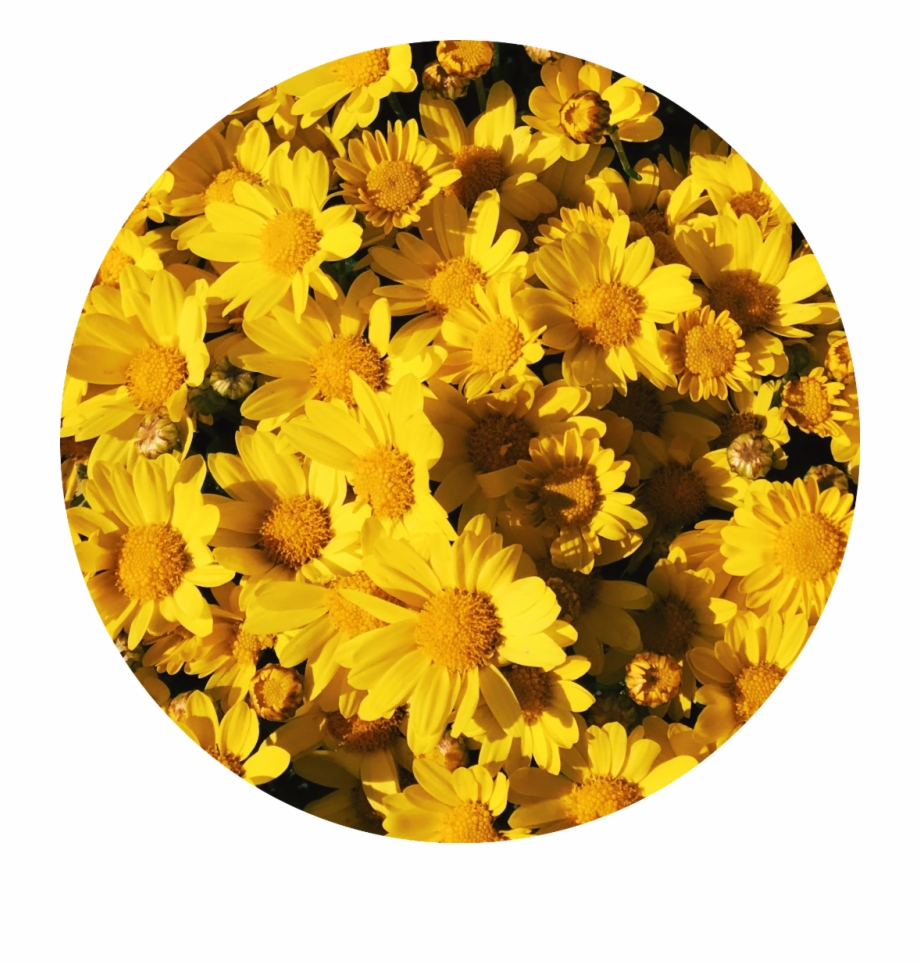Aesthetic Backgrounds Yellow Posted By Michelle Sellers
