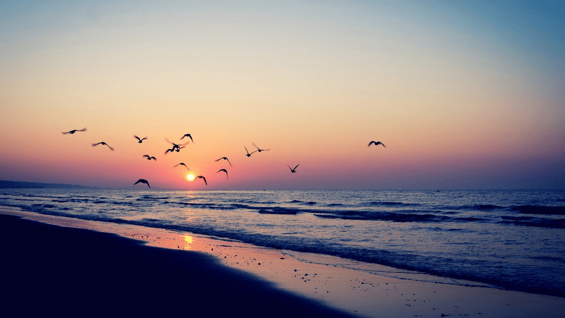 Aesthetic Beach Wallpaper Posted By Ryan Simpson