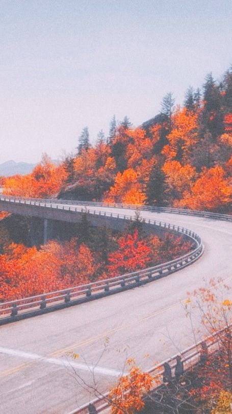 Aesthetic Fall Wallpaper Posted By Zoey Johnson