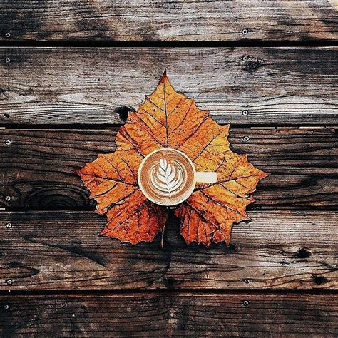 Aesthetic Fall Wallpapers Posted By John Walker