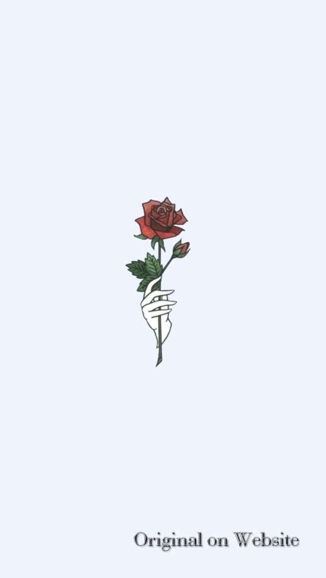 Wallpaper Iphone Aesthetic Rose Flower Total Update