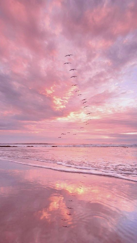 Aesthetic Pink Sunset Hd Wallpapers backgrounds Download