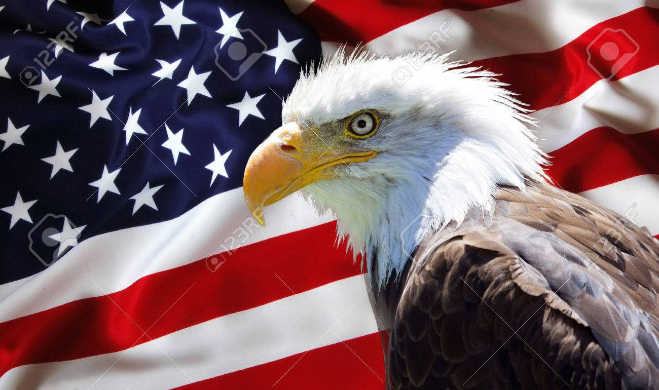 American Flag With Eagle Wallpaper Posted By Michelle Cunningham