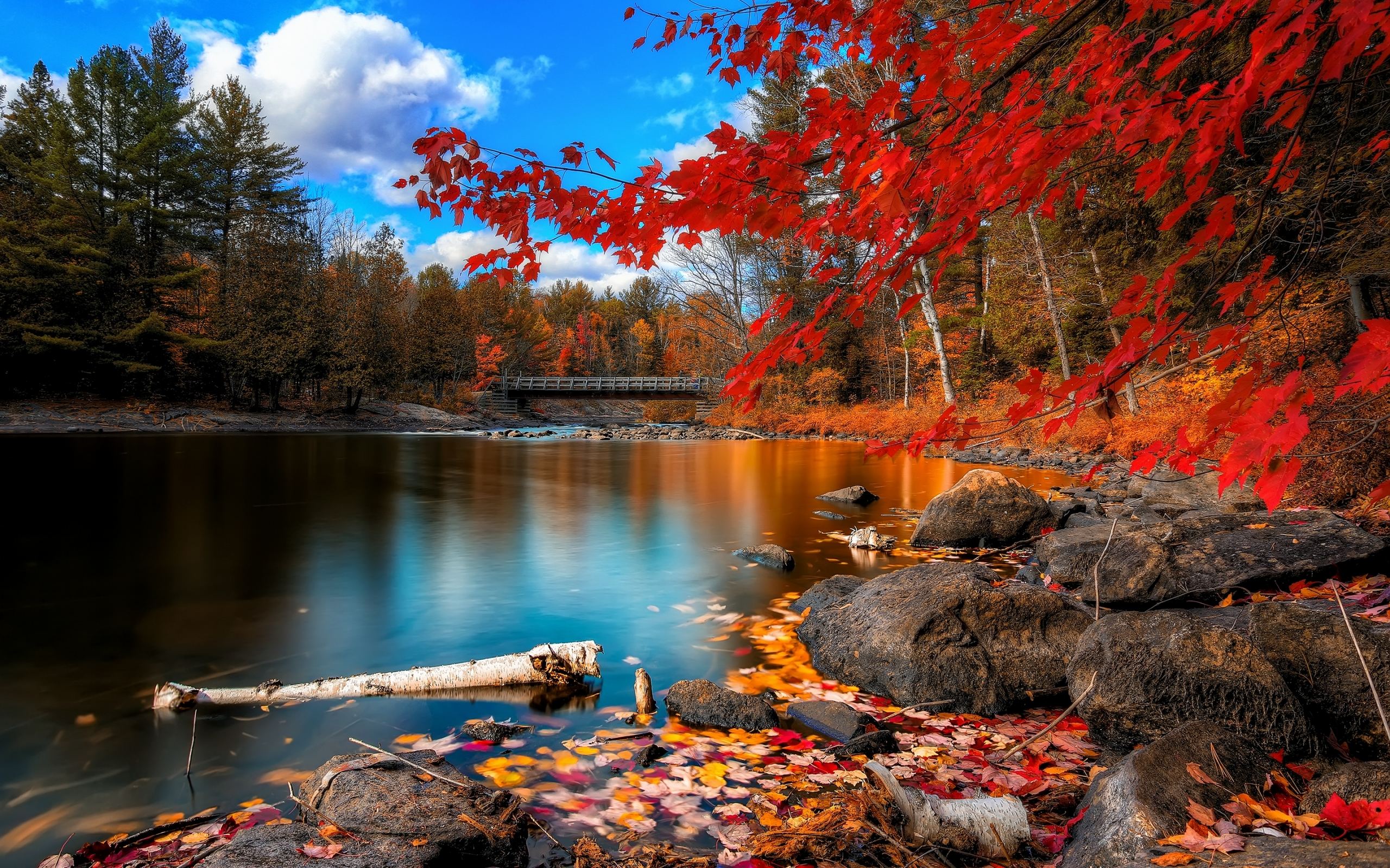 Autumn Desktop Wallpaper Hd Posted By Christopher Sellers