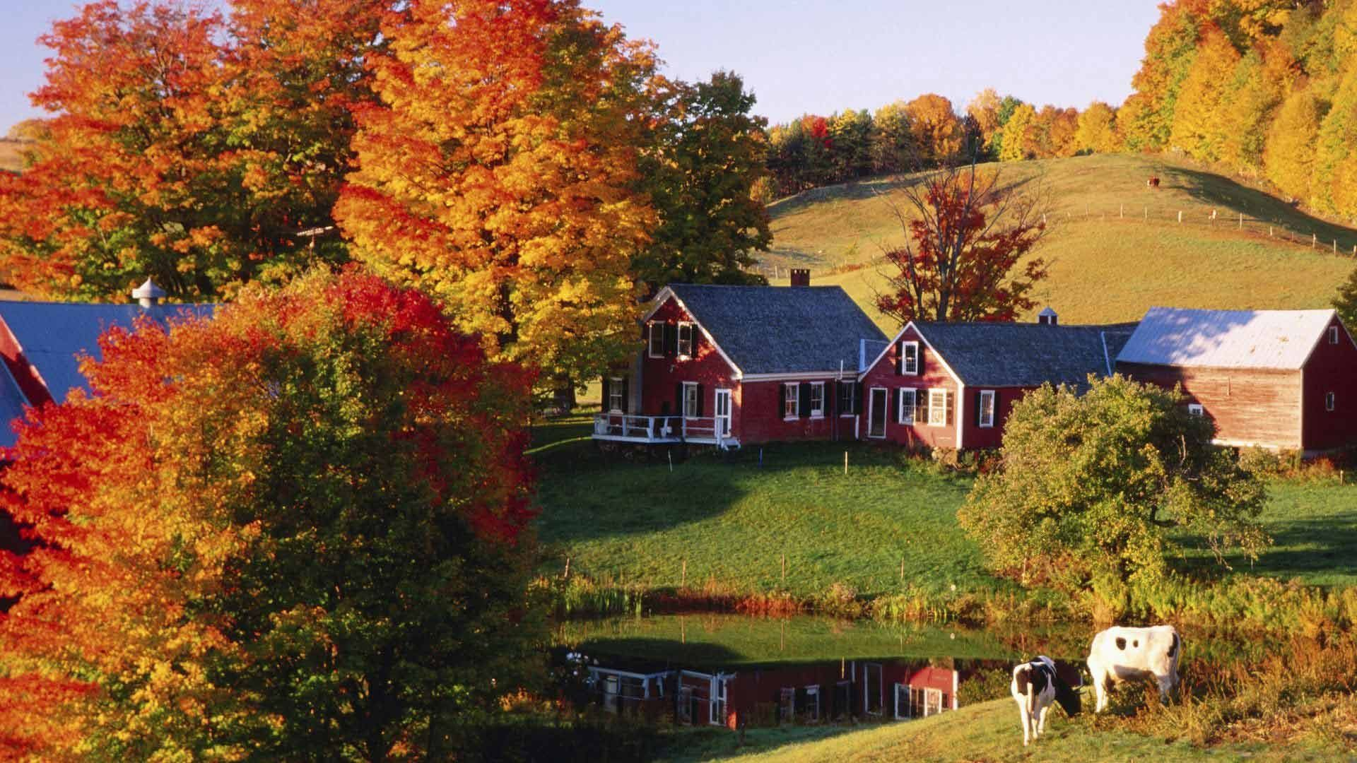 Autumn Pictures For Desktop Backgrounds Posted By John Thompson