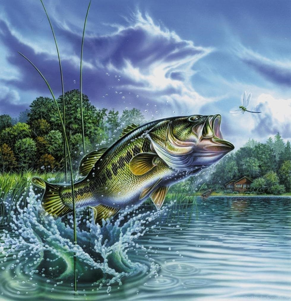 Bass Fishing Desktop Background Posted By Sarah Tremblay