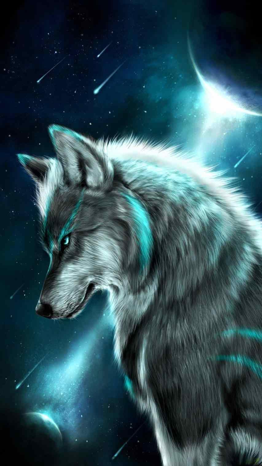 Beautiful Wolf Wallpaper Posted By Ryan Peltier