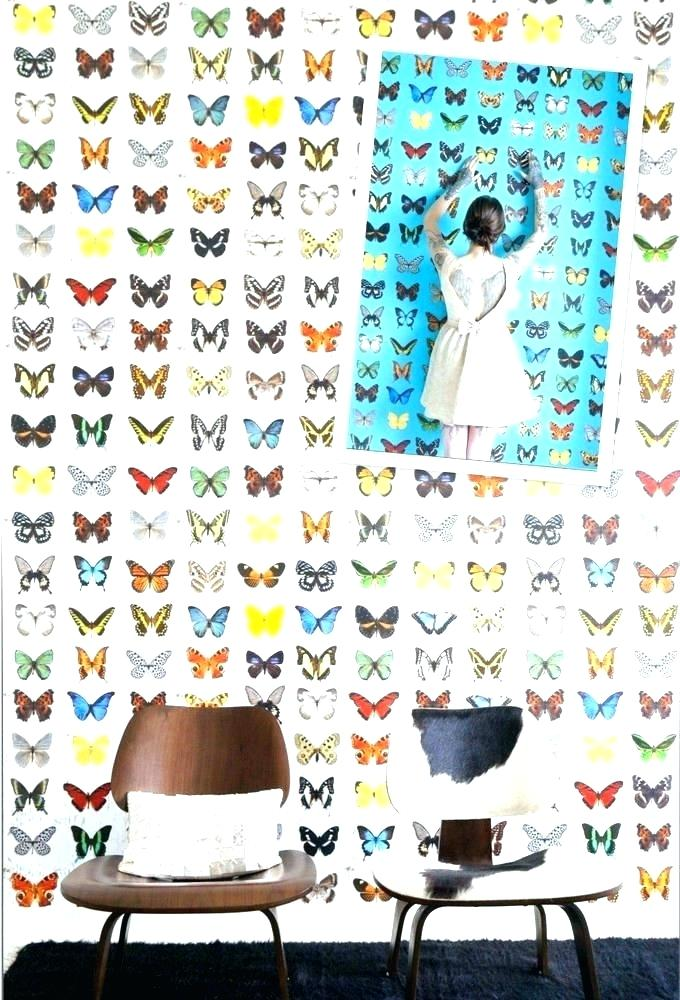 Birds And Butterflies Wallpaper Posted By Ethan Mercado