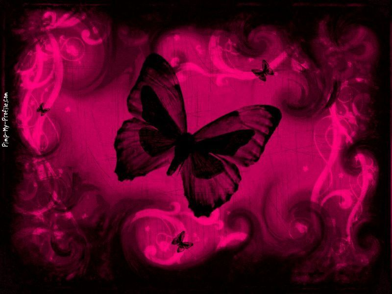 Black And Pink Butterflies Wallpaper Posted By Ethan Anderson