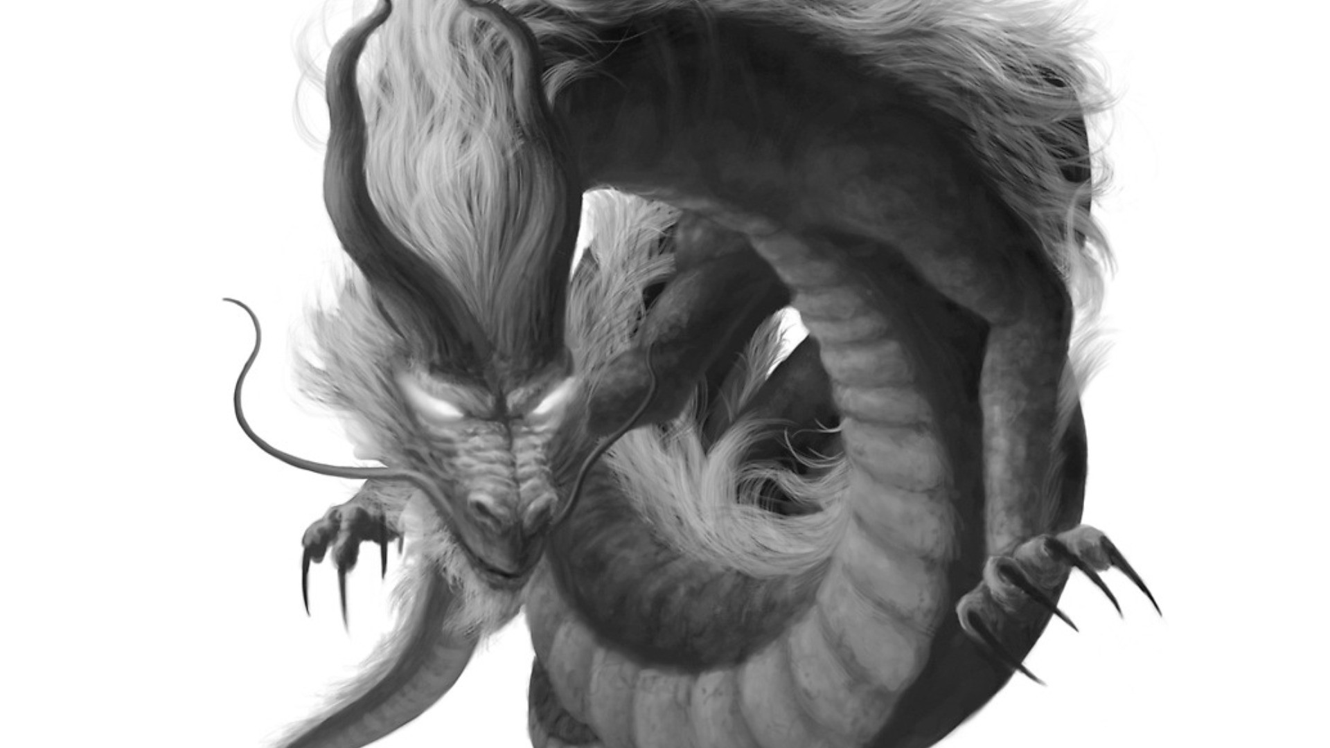 Black And White Dragon Pictures