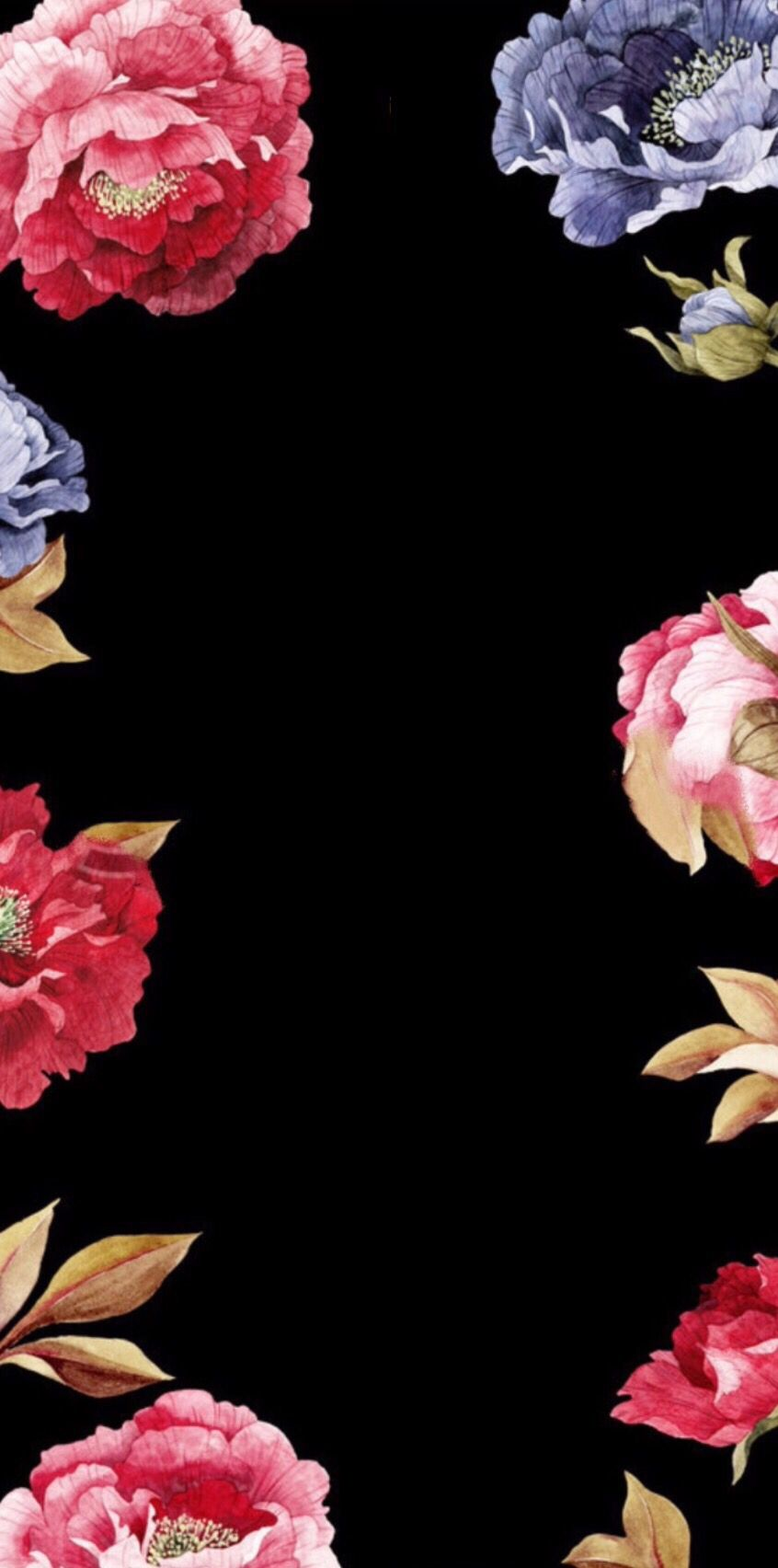 Black Flowers Wallpapers Posted By Christopher Walker
