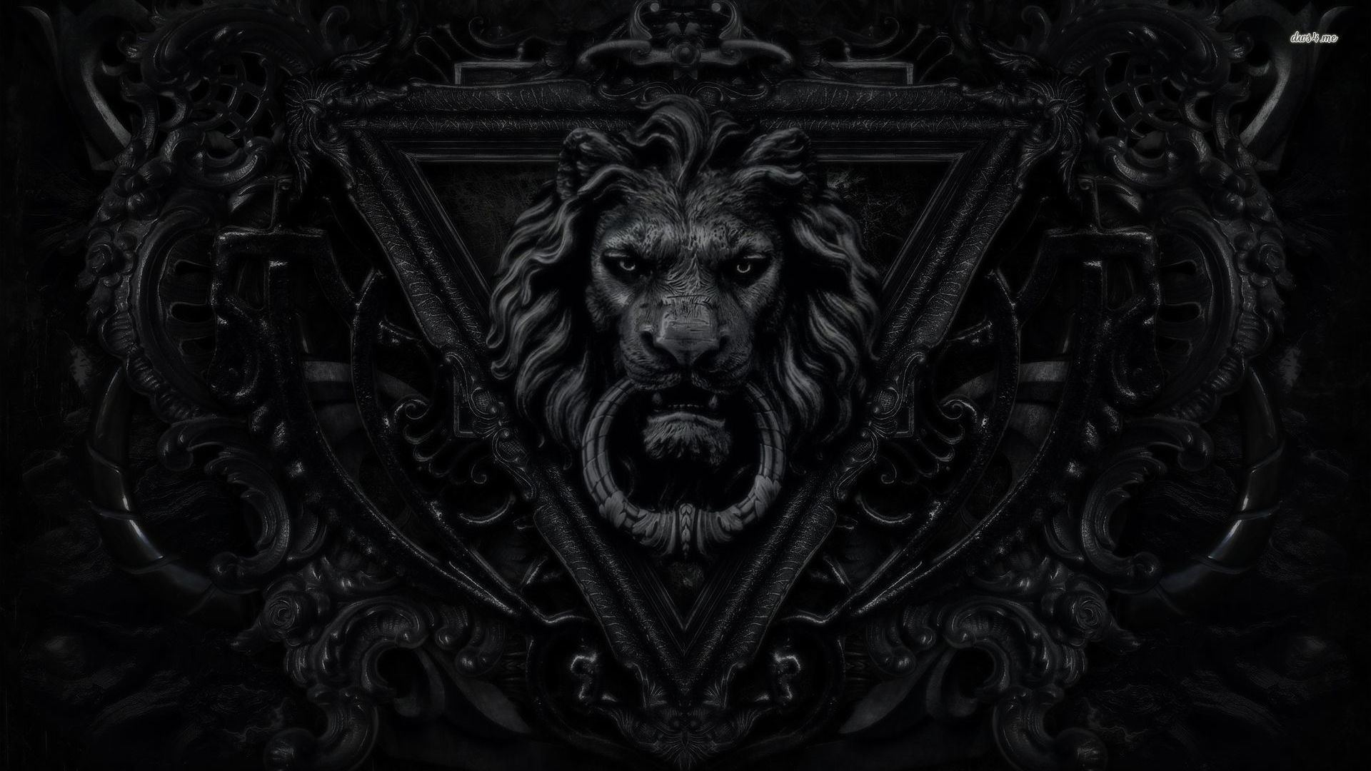 Black Lion Hd Wallpapers Posted By Christopher Anderson