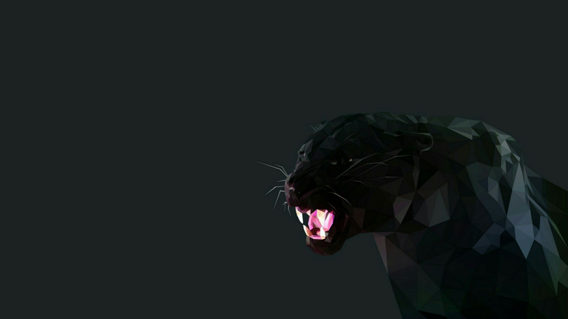 Black Panther Wallpapers Posted By Zoey Tremblay