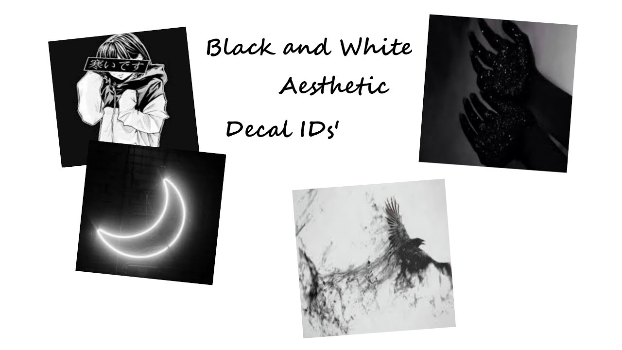 Black White Aesthetic Posted By Samantha Cunningham