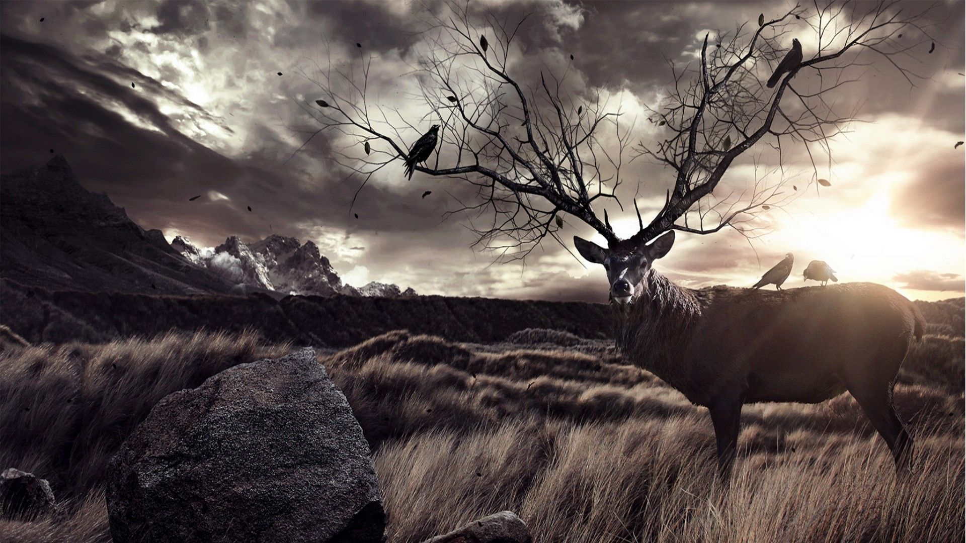Bow Hunt Wallpaper Posted By Zoey Tremblay