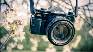 Canon Wallpaper Posted By Sarah Thompson
