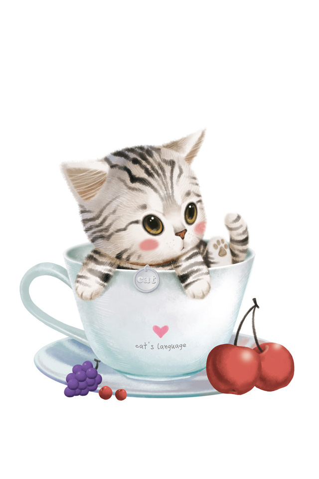 Cat Beautiful Cartoon Pictures For Drawing : Funny cat