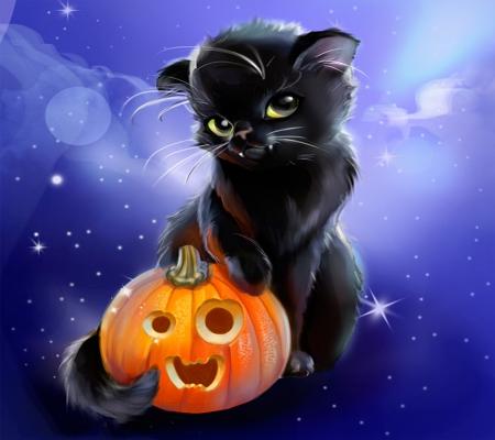 Cat Halloween Wallpaper Posted By John Johnson