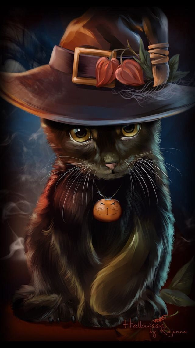 Cat Halloween Wallpaper Posted By John Johnson