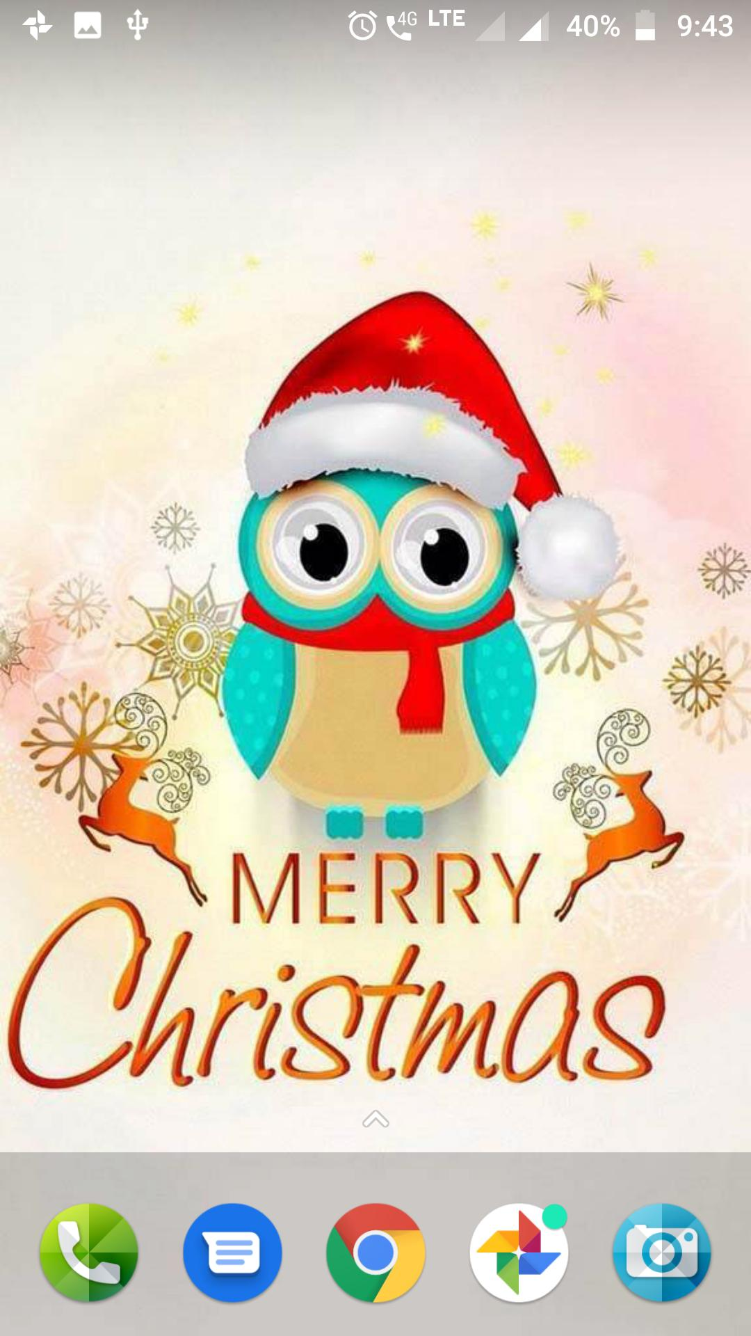 Christmas Owl Wallpaper Posted By Zoey Thompson