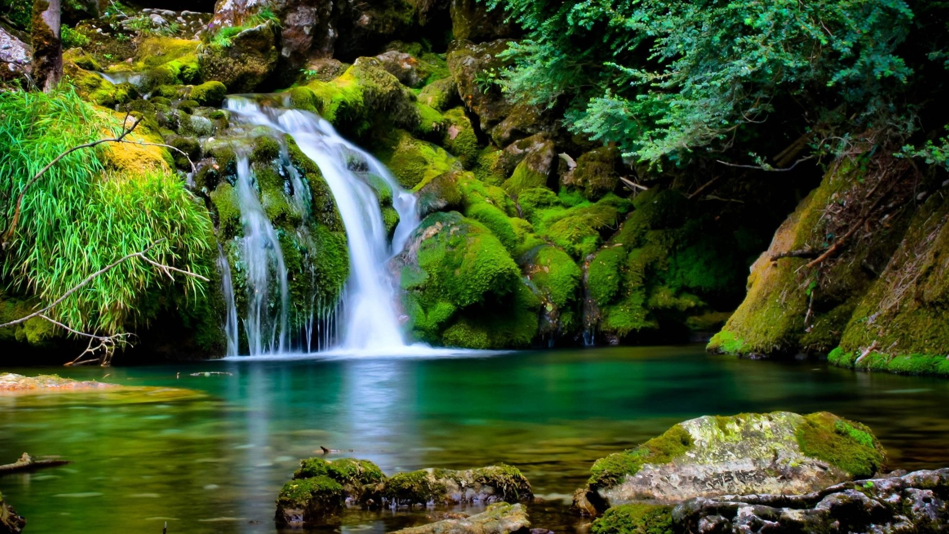 Cool Backgrounds Nature Posted By Michelle Peltier