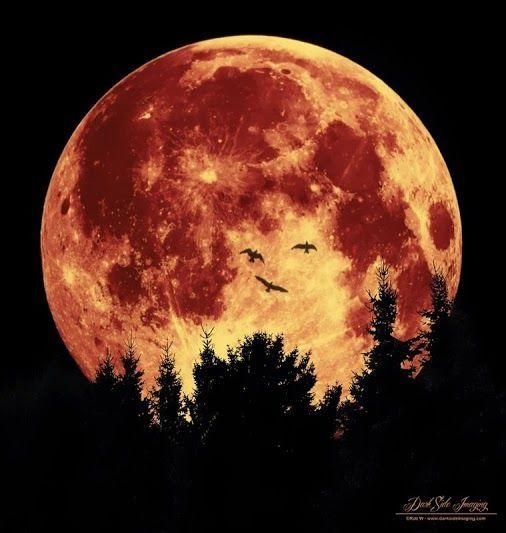 Really Cool Pictures Of The Moon