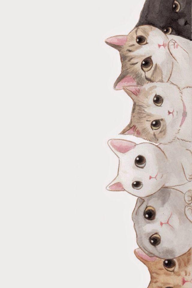 Full Hd P Cat Wallpapers Hd Desktop Backgrounds X Iphone 6