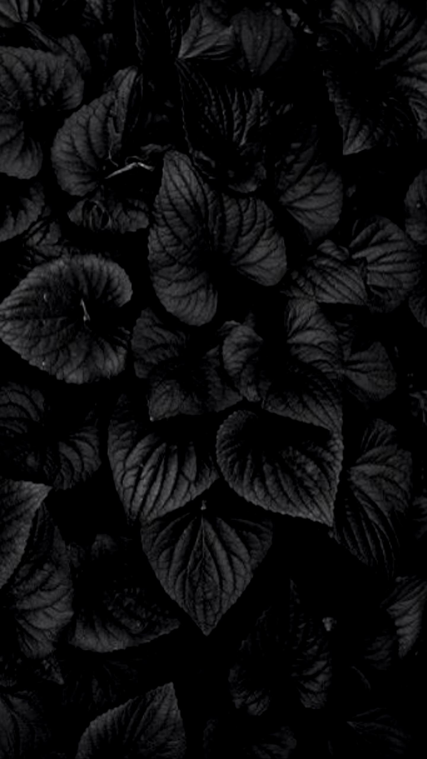 Dark 4k Wallpaper Posted By Christopher Peltier