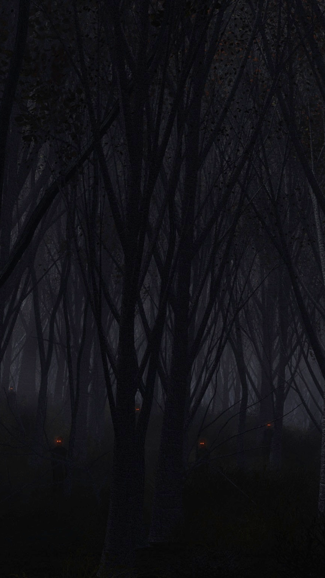Dark Forest Wallpaper Posted By Ryan Walker