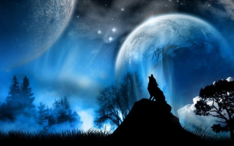 Dark Wolf Background Posted By Michelle Sellers
