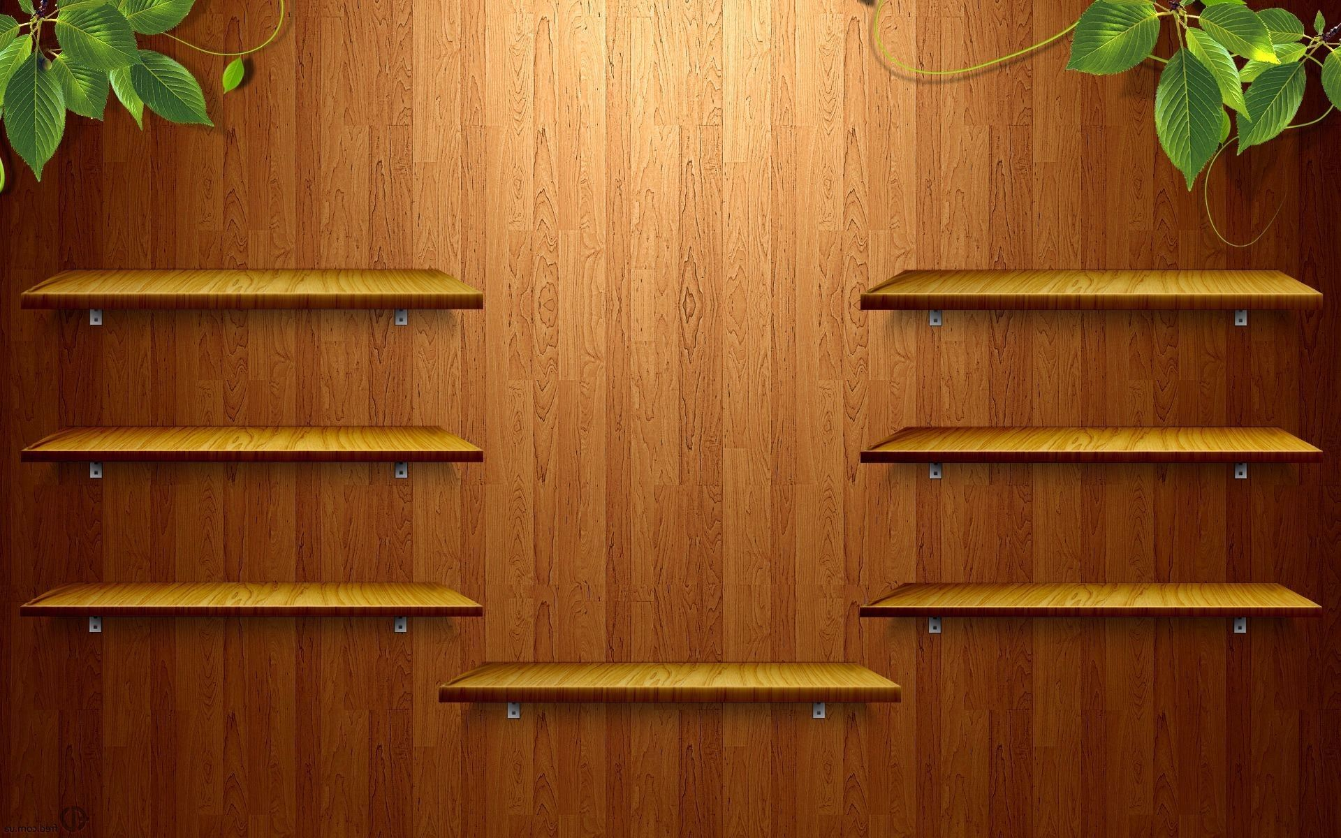 Funny Wallpapers Pc Shelves 1920x1080
