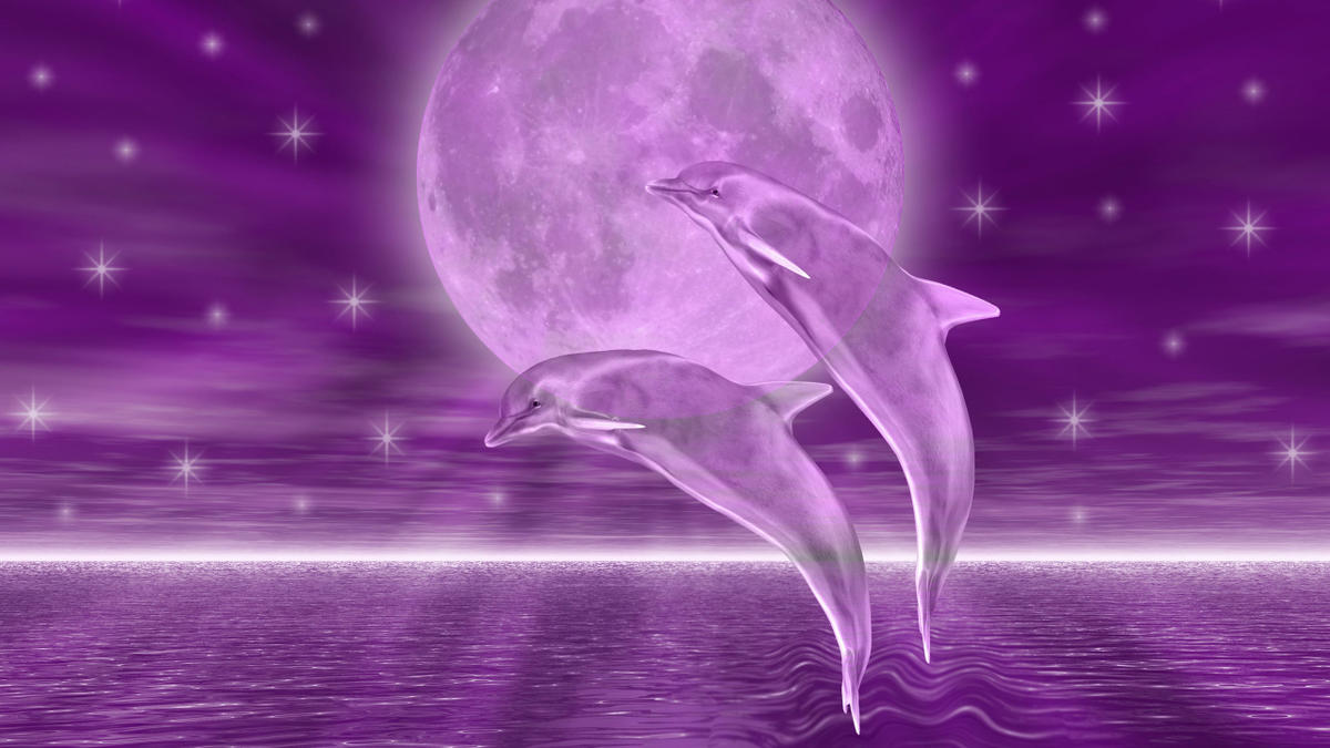 Dolphin Desktop Wallpaper posted by ...