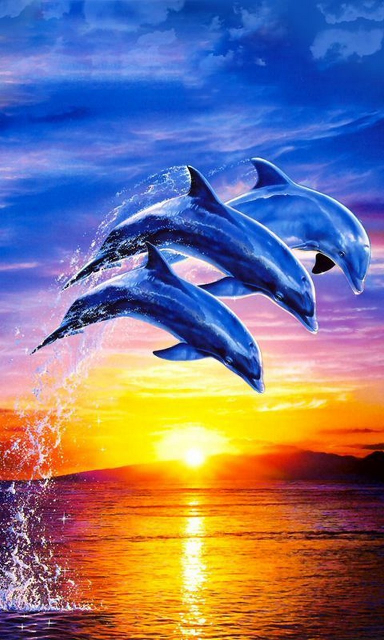 Dolphin Wallpapers Free Posted By Christopher Thompson