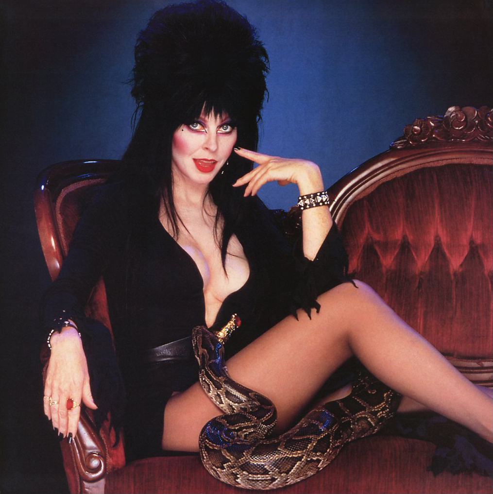 Elvira Wallpaper Posted By Sarah Johnson