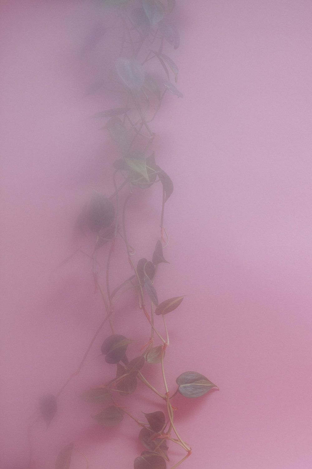Ethereal Wallpapers Posted By Ryan Simpson