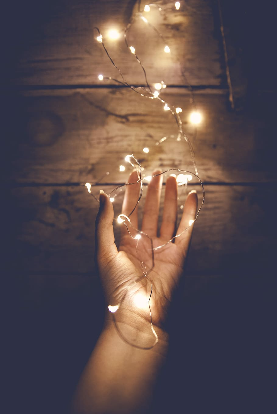 HD wallpaper person holding white string light person