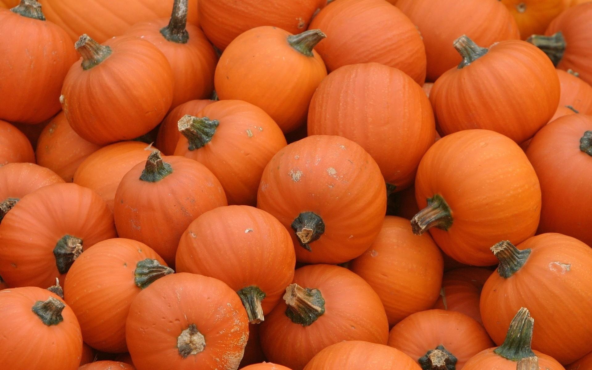 Autumn Pumpkins Desktop Wallpaper 50+ images