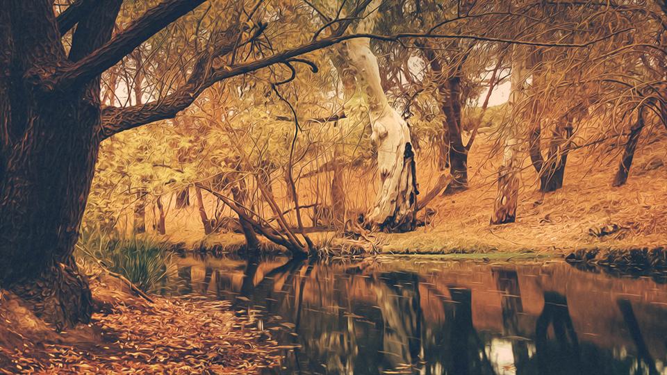 Aesthetic Autumn Stream HD Wallpaper Pling Artwork