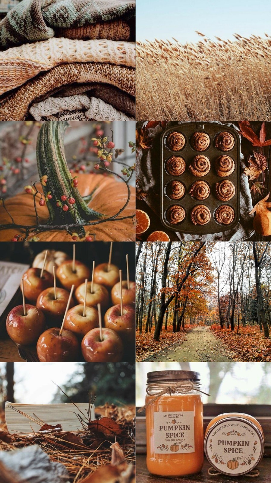 Fall Aesthetic Wallpapers Posted By Michelle Anderson