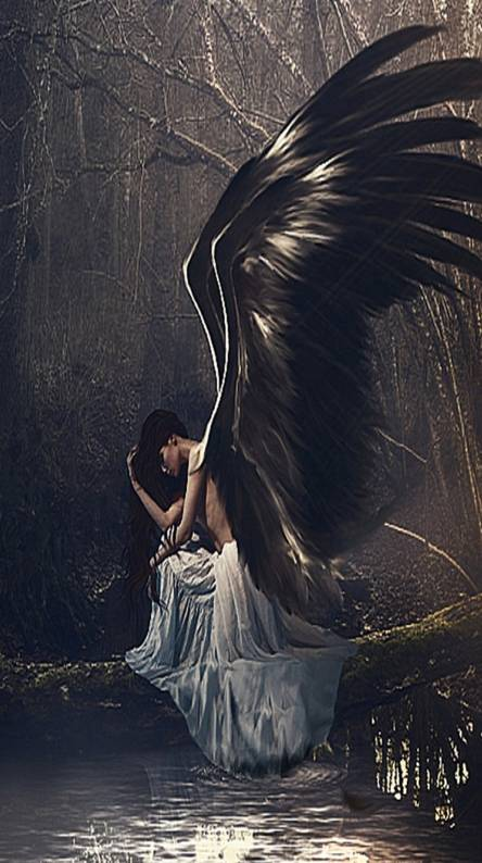 Fallen Angel Wallpaper Posted By Christopher Anderson