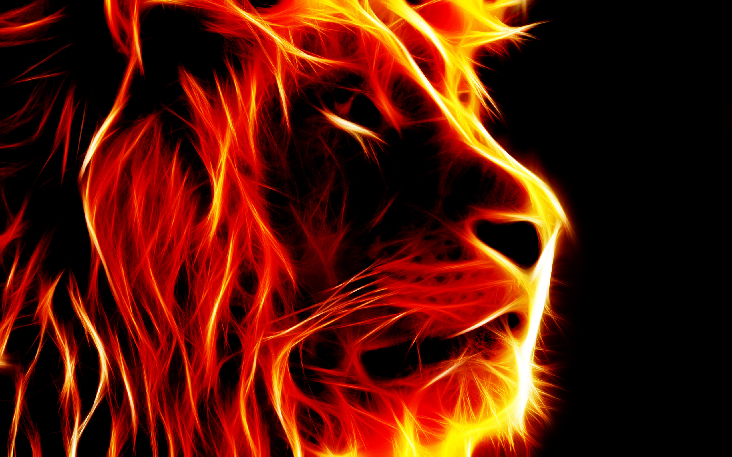 Fire Tiger Wallpaper posted by Zoey Sellers