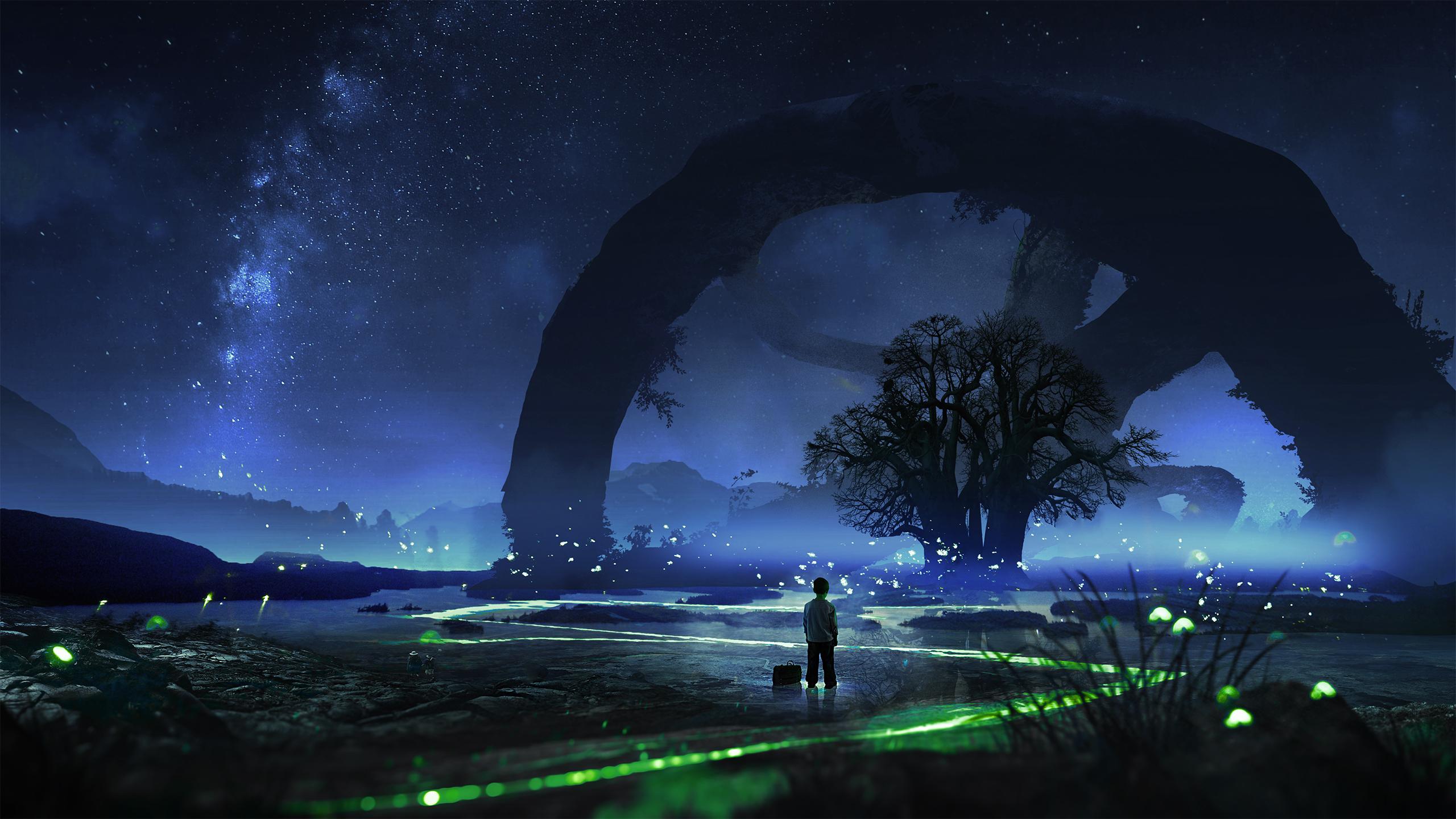 Fireflies Desktop Wallpaper