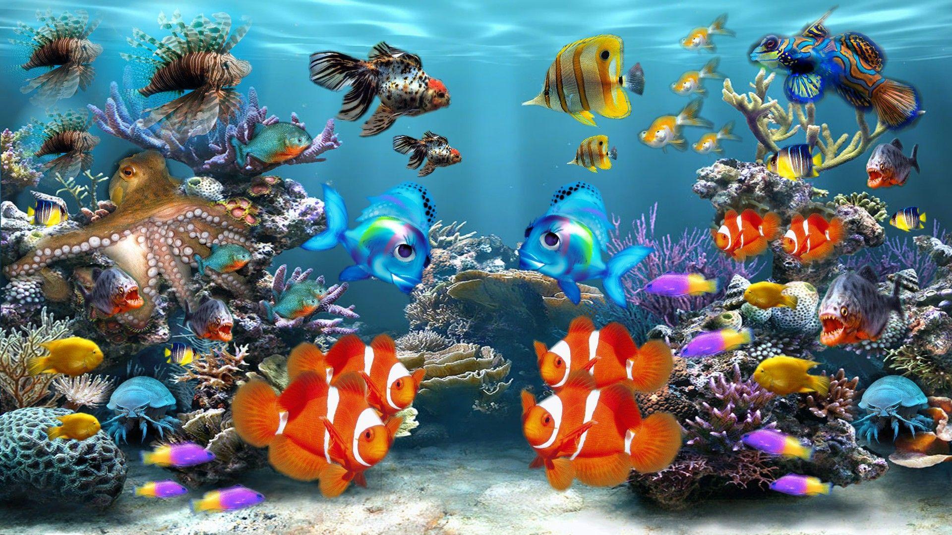Fish Desktop Background Posted By Sarah Peltier