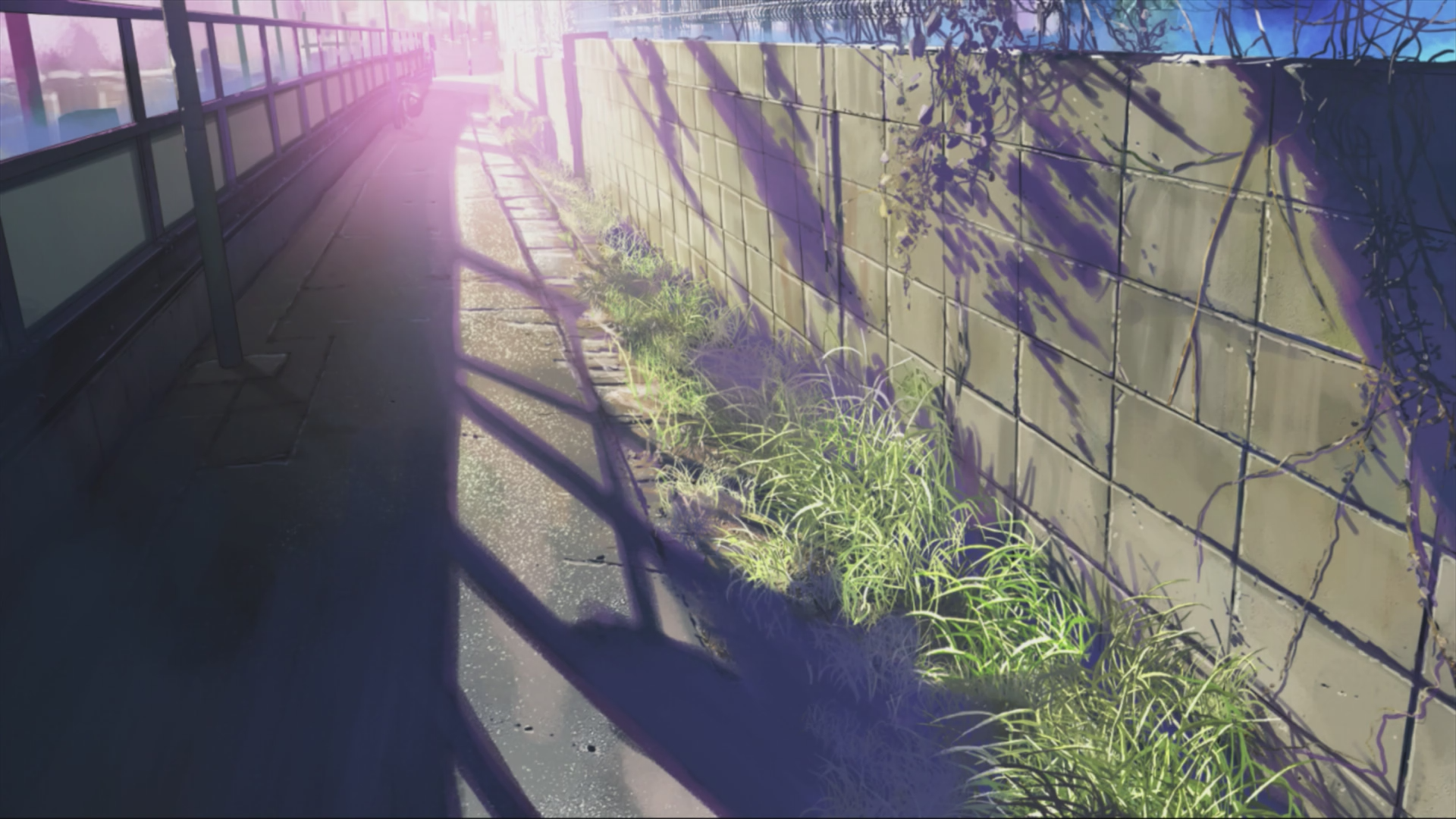 Five Centimeters Per Second Wallpaper Posted By Christopher Mercado