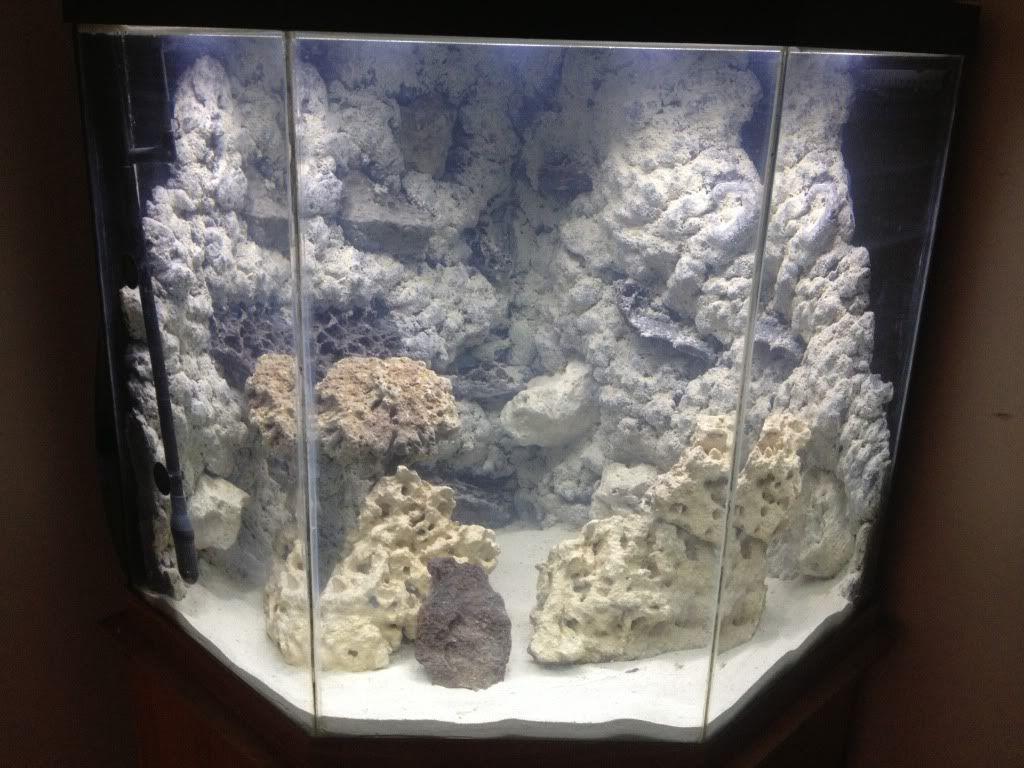 Foam Aquarium Background Posted By Ethan Tremblay