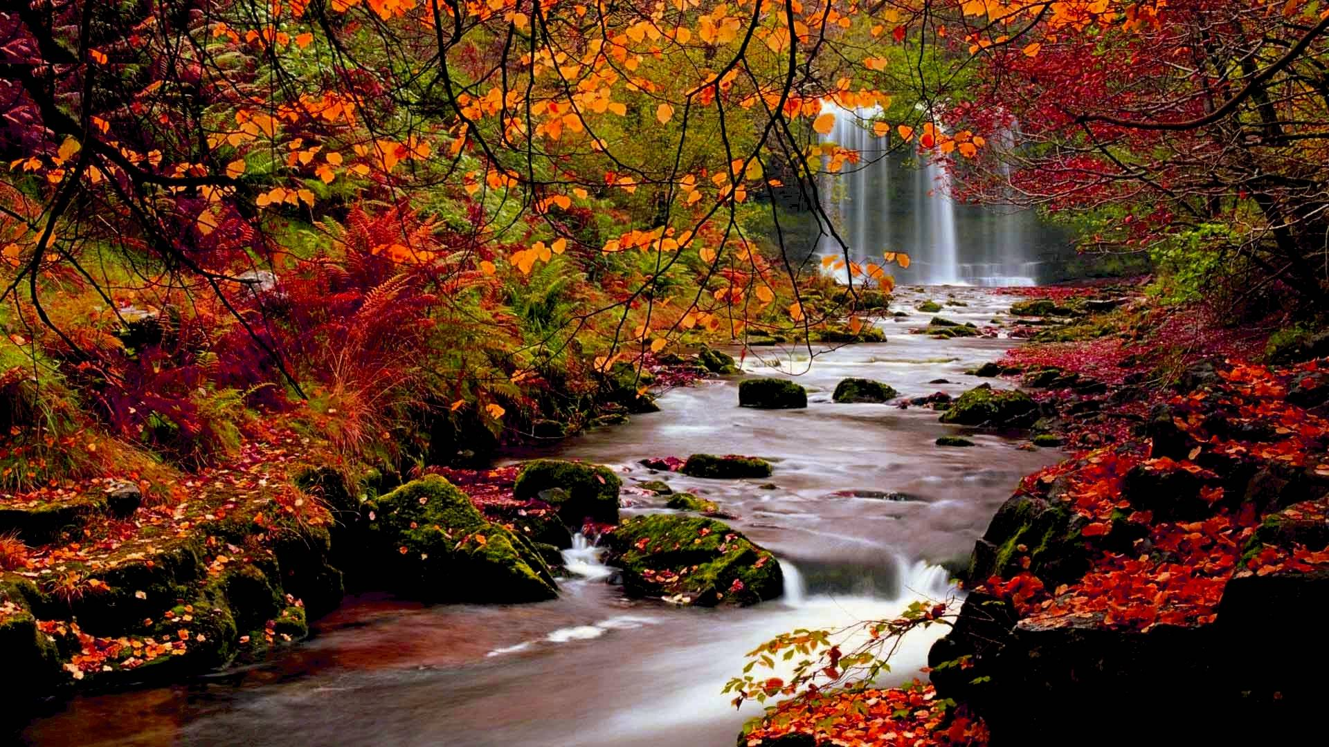 Free Autumn Screensavers Posted By Ryan Walker
